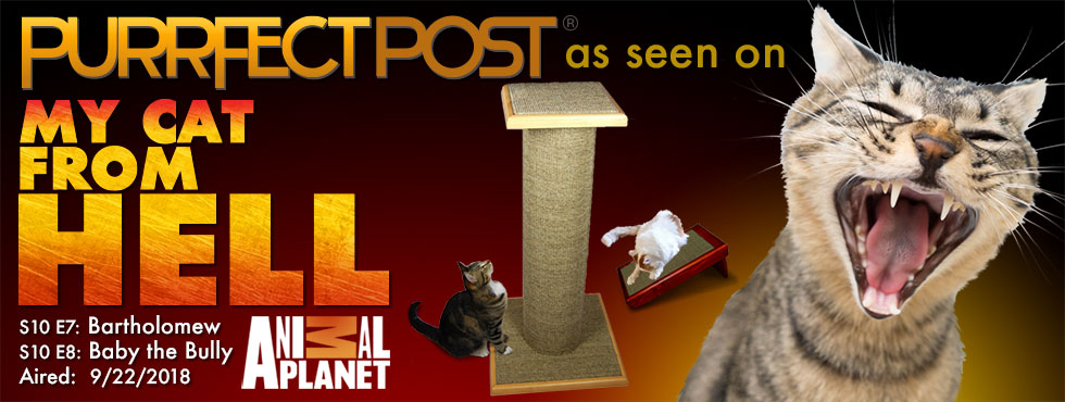 Purrfect Post as seen on My Cat From Hell on Animal Planet 9/22/2018