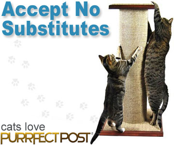 PurrfectPost.com - Accept No Substitutes