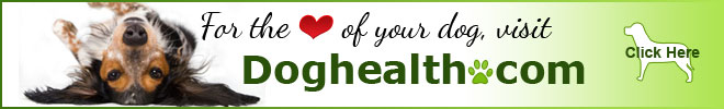 Dog Health For the love of your dog