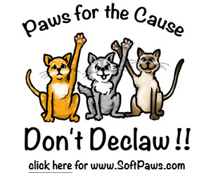 SoftPaws Paws for the Cause