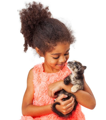 Certain cat breeds are known for being good with kids.