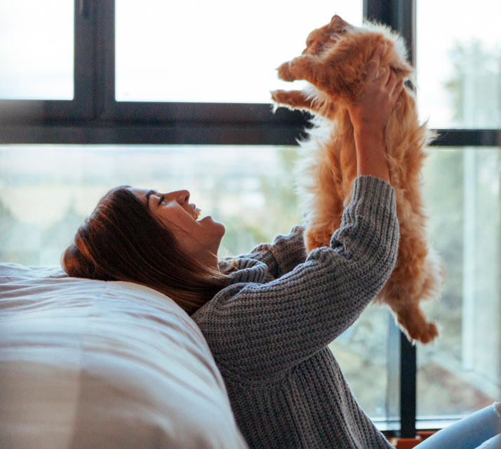 Find out whether you or your cat is the boss in your home.
