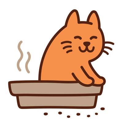 4 Tips For Cleaning Cat Poop