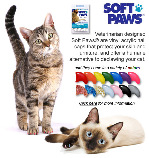 Veterinarian designed Soft Paws® are vinyl acrylic nail caps that protect your skin and furniture, and offer a humane alternative to declawing your cat.