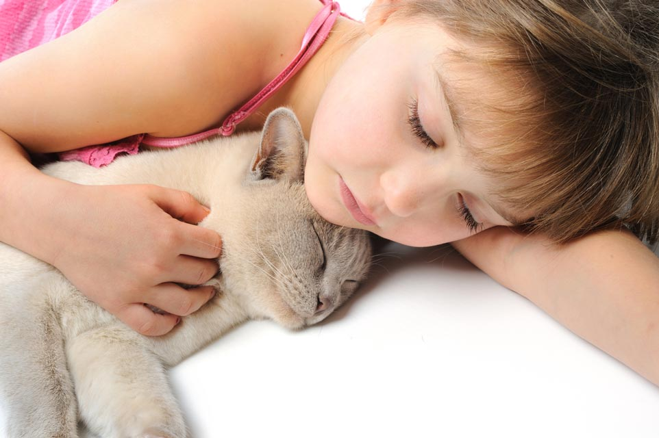 Keeping your cat healthy is easier with good pet insurance.