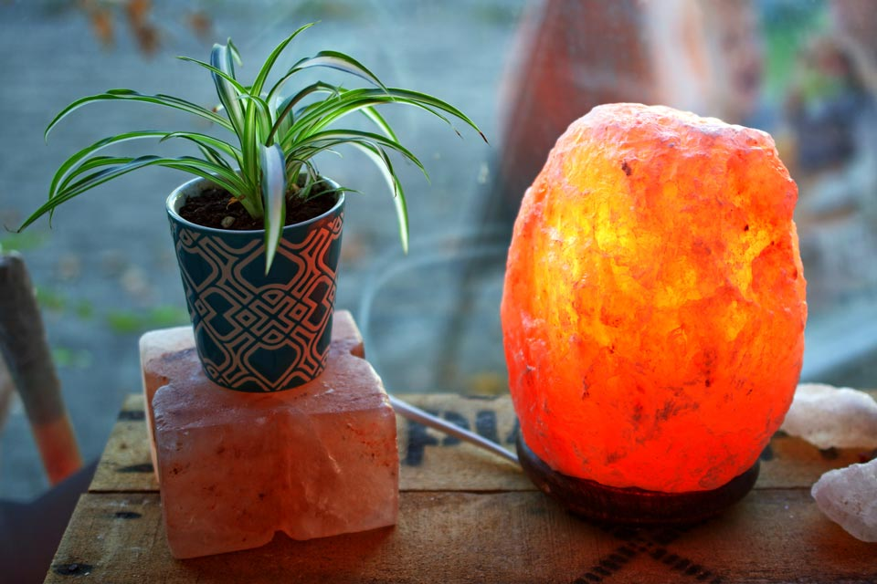 Learn the possible dangers of salt lamps for cats.