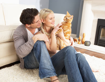 Use knowledge and good products to end problem cat scratching.