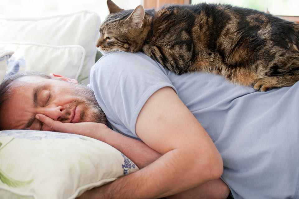 Why do cats jump on people while they're asleep?