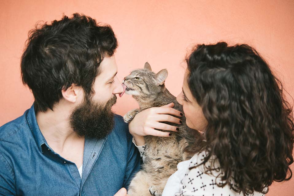 Learn why some cats lick people.